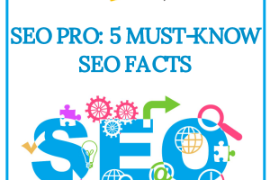 Think you're an SEO pro? Do you know all there is about SEO facts and figures?
